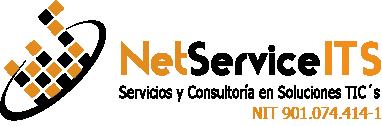 NetService IT Solutions Logo